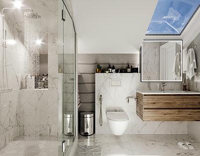 Bathrooms visualization