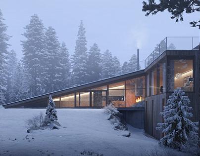 Winter Residential