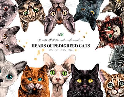 The cat's head