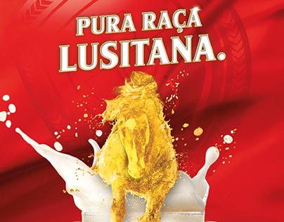 Poster XVIII Feira do Cavalo - Sagres