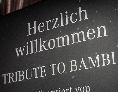 Tribute to Bambi Verleihung