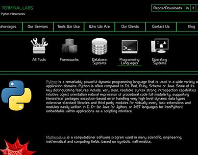 Lektor Website (2017 - Present)