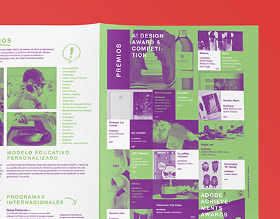 Graphic Design Brochure