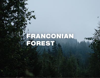 franconian forest