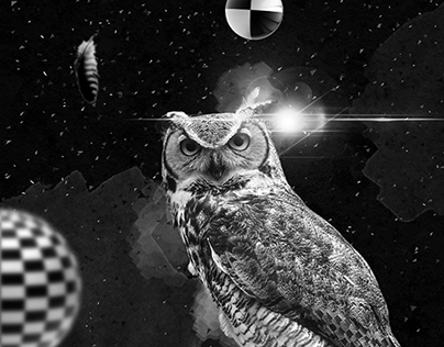 ARTWORK #OWL