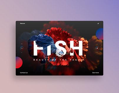 Вдохновение Веб-дизайн для любителей аквариумных рыбок