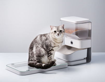 CATFI the smart feeder
