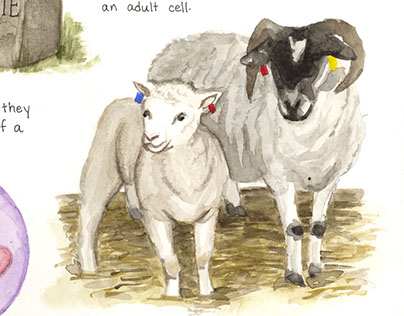 Dolly The Sheep Biography