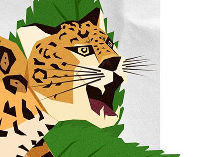 Panthera Onca - Jaguar