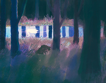 Orion Magazine - Mystery Short Fictions Illustrations