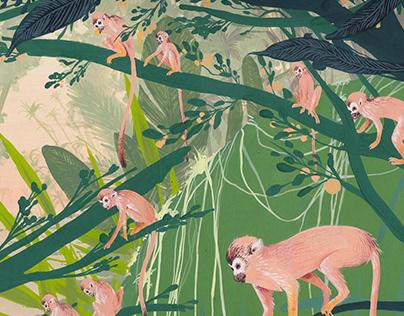 Squirrell monkeys