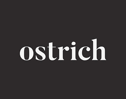 Ostrich | Identity Design and Posters