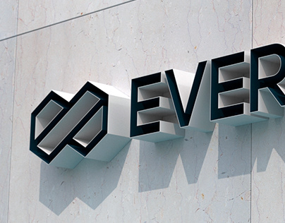EverFlow Brand Identity Design