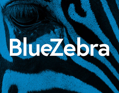 BRANDING AND WEB DESIGN FOR BLUEZEBRA
