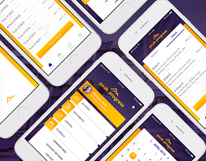 Peak Progress App Design