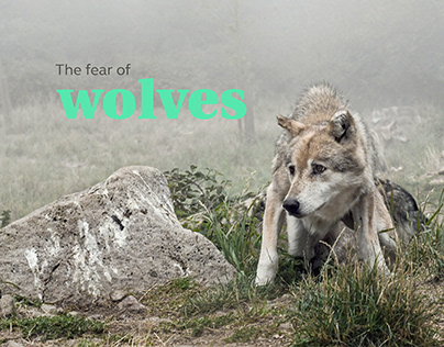 The Fear of Wolves