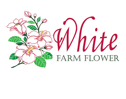 The White Farm Flower Catalogue
