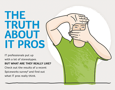 Truth About IT Pros Infographic
