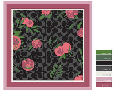 COACH: Silk Logo Scarf Design Proposal