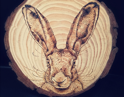 Pyrographed Hare