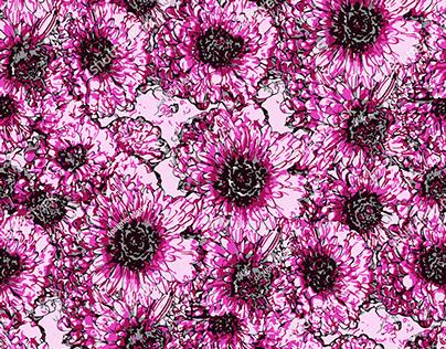 Chrysantemum Flowers Pattern