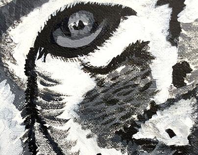 Snow Leo on Canvas