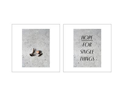 Wolf & Peony visual communication on Instagram