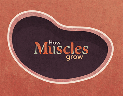 How Muscles Grow: Science exhibit