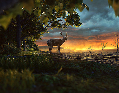 End of Deers
