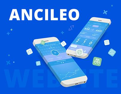 Ancileo Web & Mobile Design, Distribution With B2B2C