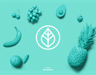 Diet life || Visual brand identity