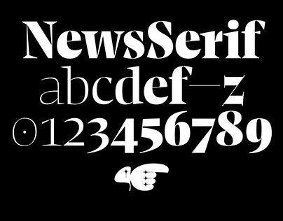 NewsSerif Typeface 20 Styles & Variable Font