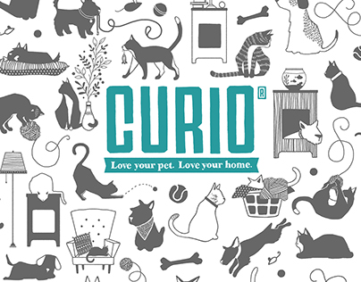 CURIO Package Design
