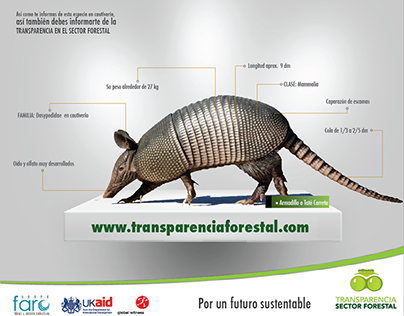 TRANSPARENCIA SECTOR FORESTAL