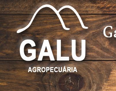 Cartão de Visita - GALU AGROPECUÁRIA