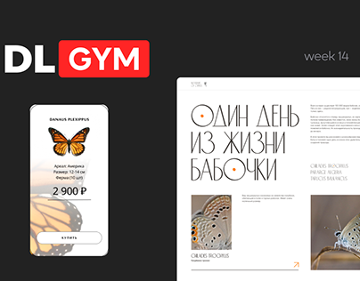 Бабочки на Design Line GYM/ Butterflies