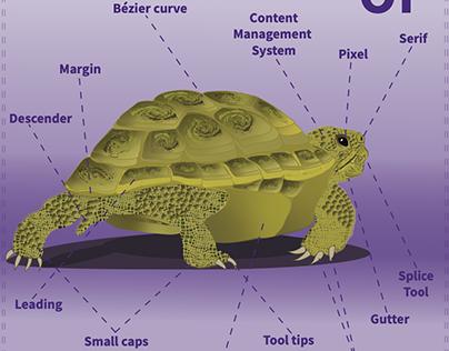 Infographic: Anatomy of a Graphic Designer's Tortoise