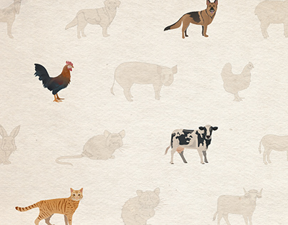 Illustration Package I / domestic animals