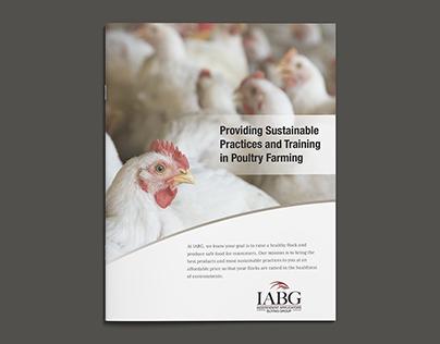 IABG Marketing Brochure