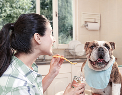 PAWS Pet Adoption