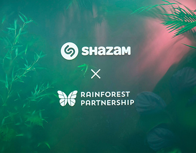 RAINFOREST INSTALLATION — Shazam