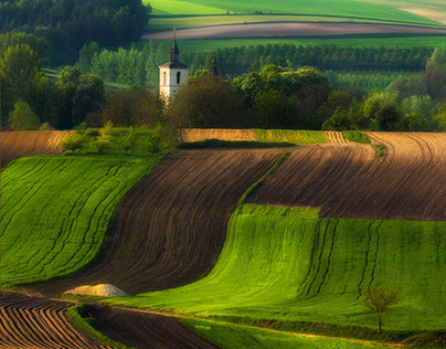 Green power. Spring on the fields. Poland. Czech Rep.