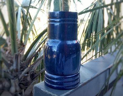 Moon Cactus Pot
