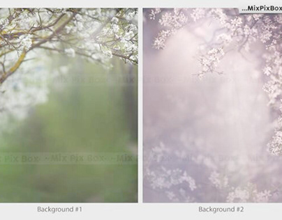 Spring Portrait Backgrounds