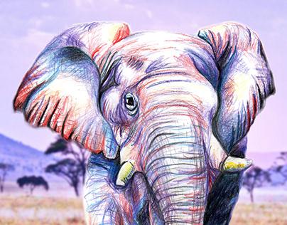 jak słoń w porcelanie :)
