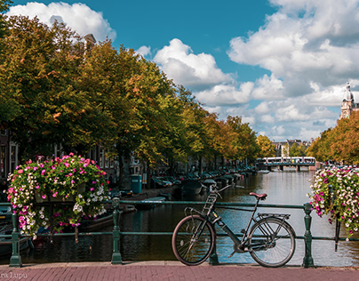 Travel Journal: Amsterdam Postcards