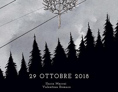 29 Ottobre 2018 - Vaia