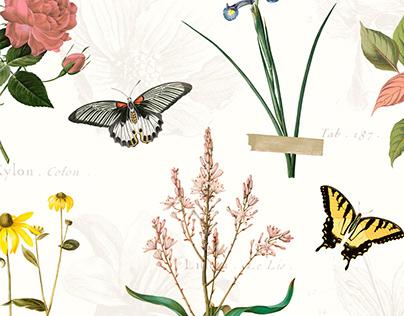 Bloom - Livenza Lingerie
