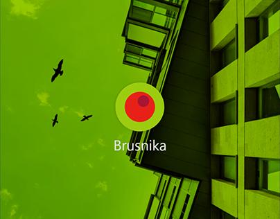 Brusnika   mobile app