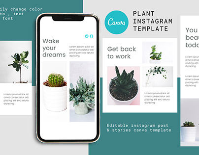 Plant Canva Instagram Post and Stories Template